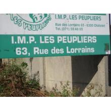 Peupliers (Les) - Ramure (La)