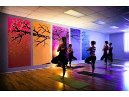 Satya - Siège Associatif de Thérapie corporelle, de Yoga et d'Accompagnement par le coaching