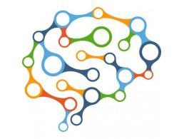 Neuropsychologue
