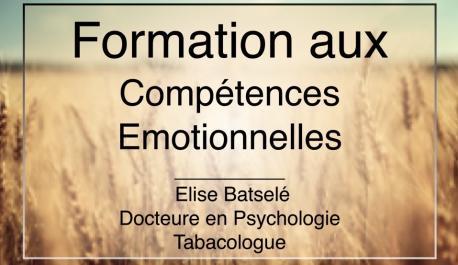 Formation aux compétences émotionnelles