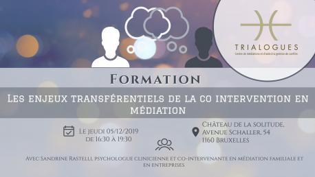 Les enjeux transférentiels de la co intervention en médiation