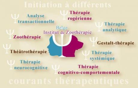 L'Institut Belge de Zoothérapie organise une initiation à différents courants thérapeutiques