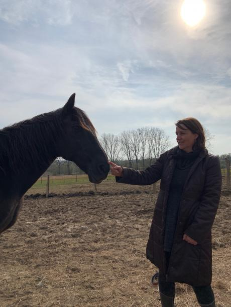 Expression de Soi, avec l'aide des chevaux
