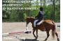 Week-end d'initiation à la formation en Equitation adaptée