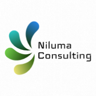 Niluma consulting